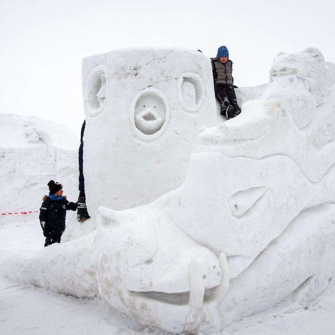 snow-2019_22